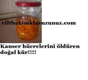 kanser hücrelerini öldüren doğal kür
