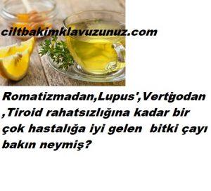 Romatizma lupus tiroid -bir çok hastalığa iyi gelen çay