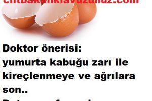 Kireçlenmeyi geçiren yumurta kabuğu zarı ve faydası
