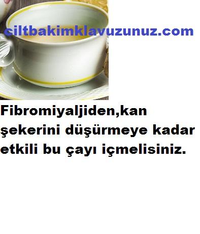 Fibromiyalji Başta Olmak Üzere Bir Çok Rahatsızlığa İyi Gelen Çay