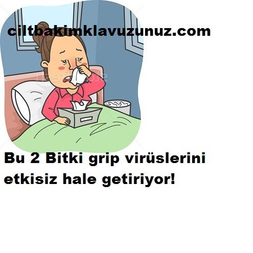 Bu 2 Bitki Grip Virüslerini Etkisiz Hale Getiriyor
